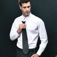 "Premier PR785 Clip ""Colours"" Fashion Tie"