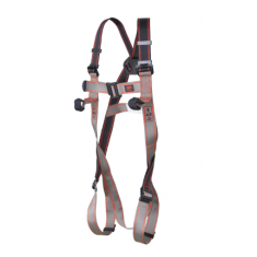 JSP Pioneer™ 2-Point Harness FAR0203