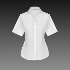 Disley BRIANNA LH130 Self Stripe Women's Short Sleeve Blouse